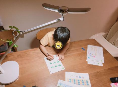 マインドデュオ(MindDuo)は子供のリビング学習におすすめ