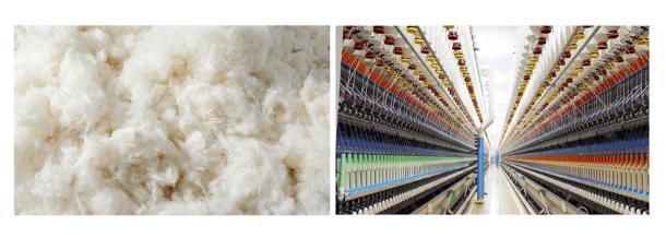 ジャパンブルージーンズの綿からの糸の製造