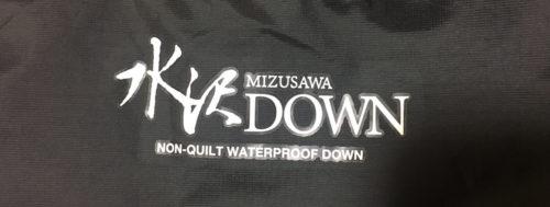 水沢ダウンのロゴ